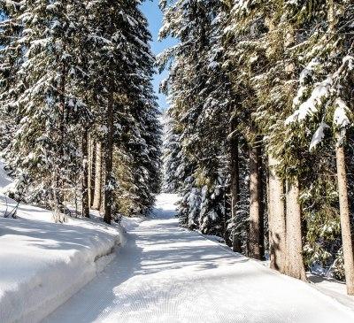 Winterwanderweg am Hörnlepass
