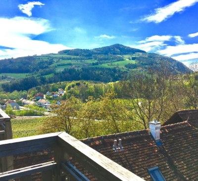 Gartenblick, © flaggl