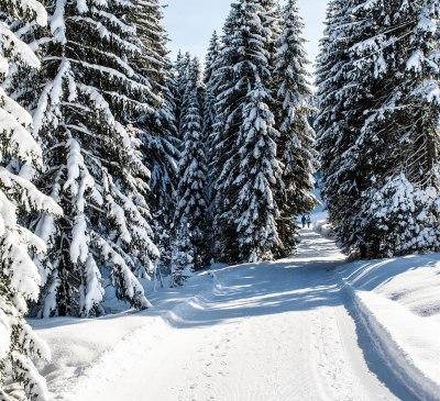 Winterwanderweg am Hörnlepass Richtung Riezlern